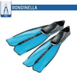 PINNE RONDINELLA A/MARINE...