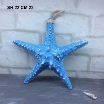 STELLA MARINA CM 22 SH22 I. 12