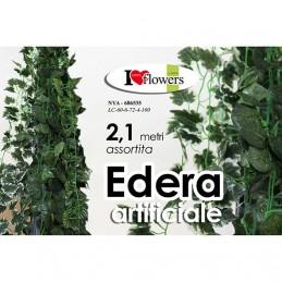EDERA 2,10M 81 ASS.